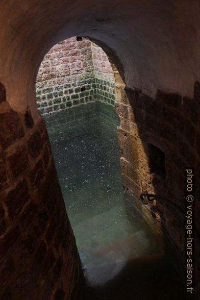 L'eau du bain rituel de Speyer. Photo © Alex Medwedeff