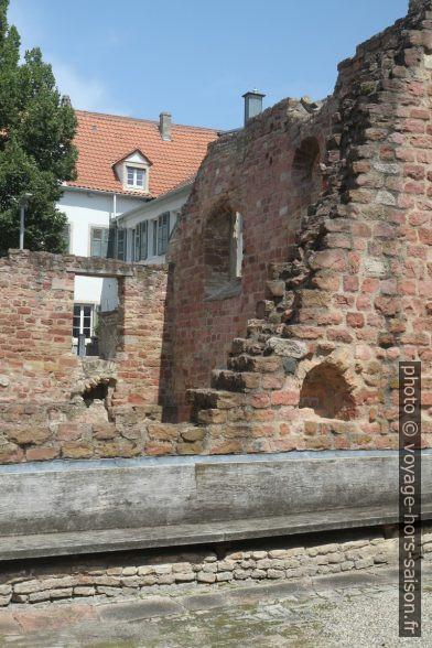 Ruine de l'ancienne Synagogue de Speyer. Photo © Alex Medwedeff