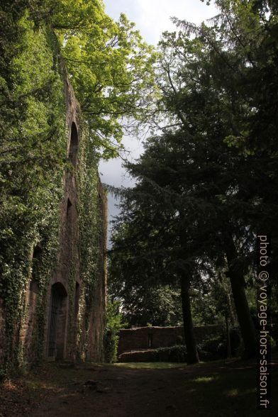 Le château arrière de Neuenbürg. Photo © Alex Medwedeff