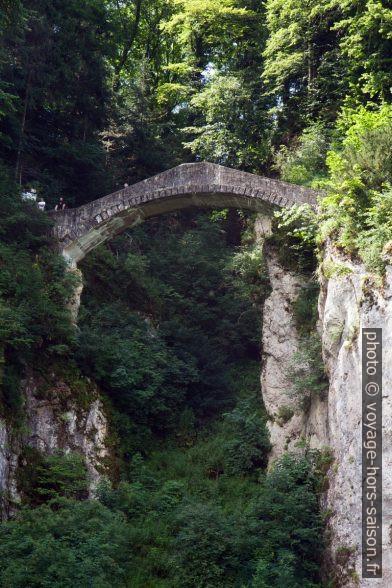 Le pont du diable du parc paysager princier d'Inzigkofen. Photo © Alex Medwedeff