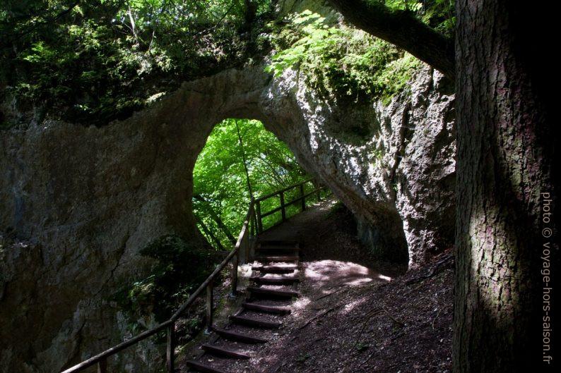 Arche naturelle dans les falaises de la rive sud du Danube à Inzigkofen. Photo © Alex Medwedeff